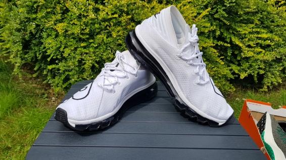 Nike Air Max FLair (1)